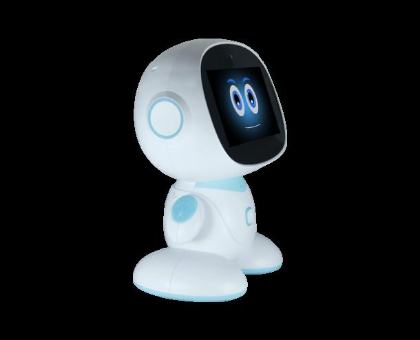 Social family robot