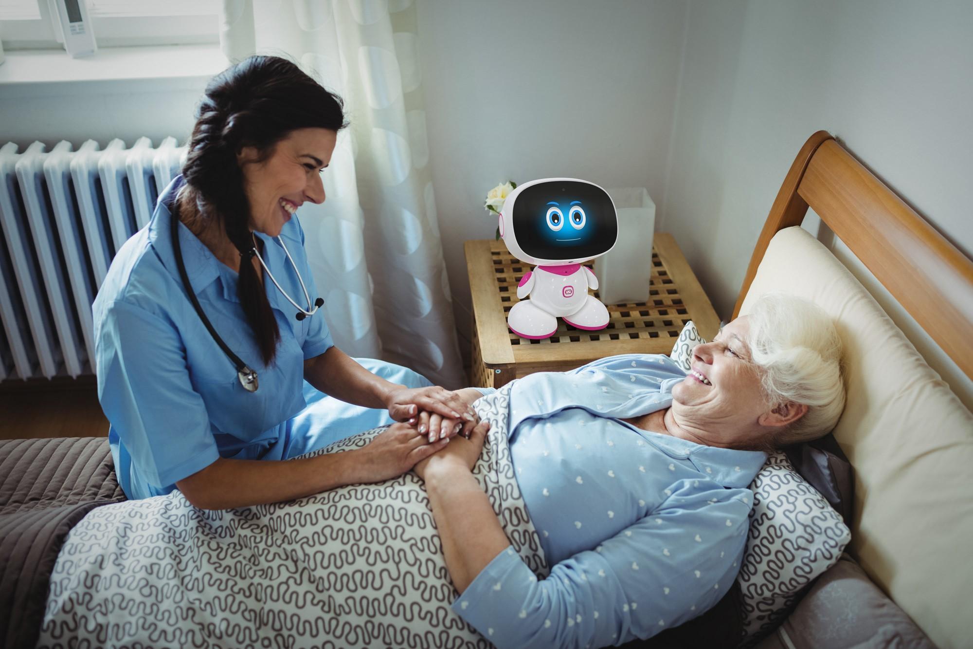 companion robots for the elderly